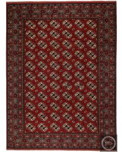 Ersari Design Afghan Rug - Deep Red / Small Patterns - front view