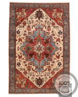Shirvan design rug
