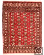Bokhara Gul Design Rug Red / Dark Red Medium Size - front view